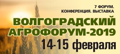 Агрофорум в Волгограде в 2019 году