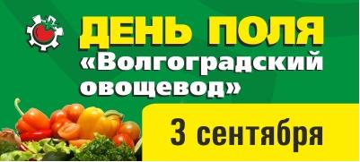 """День поля """"Волгоградский овощевод"""""""