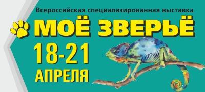 Выставка животных в Волгограде 2019