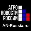 https://an-russia.ru/