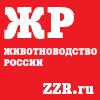 https://zzr.ru