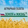 www.zizh.ru