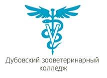 https://dzvc.ru/